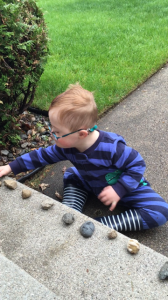 T with rocks 2