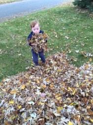 T w leaves2