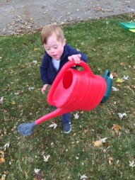 T watering bucket4