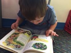 T reading